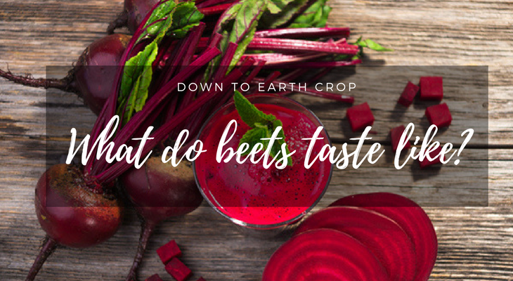 What do beets taste like?