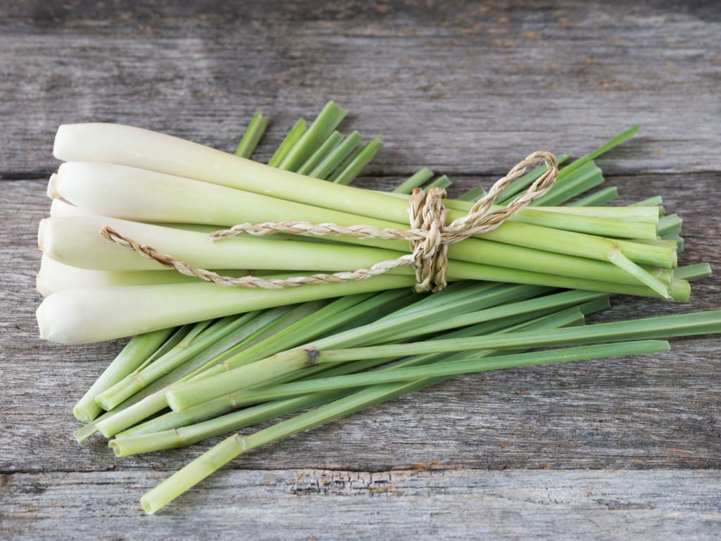 The Best Substitute For Lemongrass For Delicious Dishes 1 #cookymom