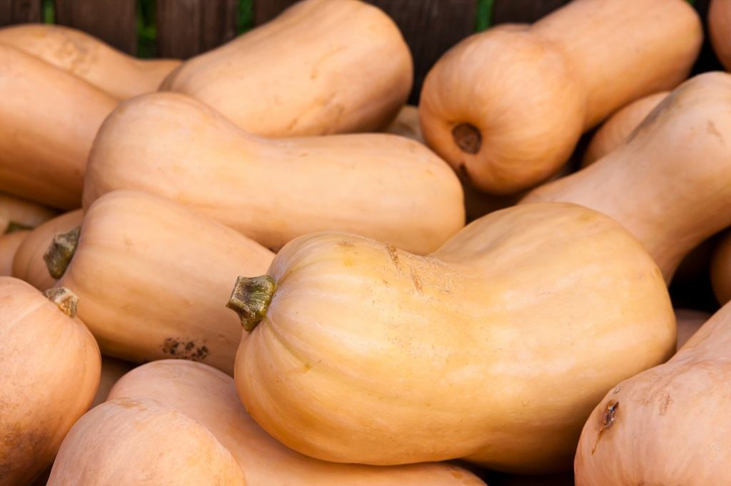 What Does Butternut Squash Taste Like? 5 #cookymom