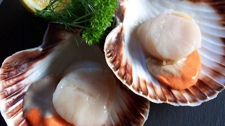 What Do Scallops Taste Like? Understanding the Bivalve Goodness Under the Sea 1 #cookymom
