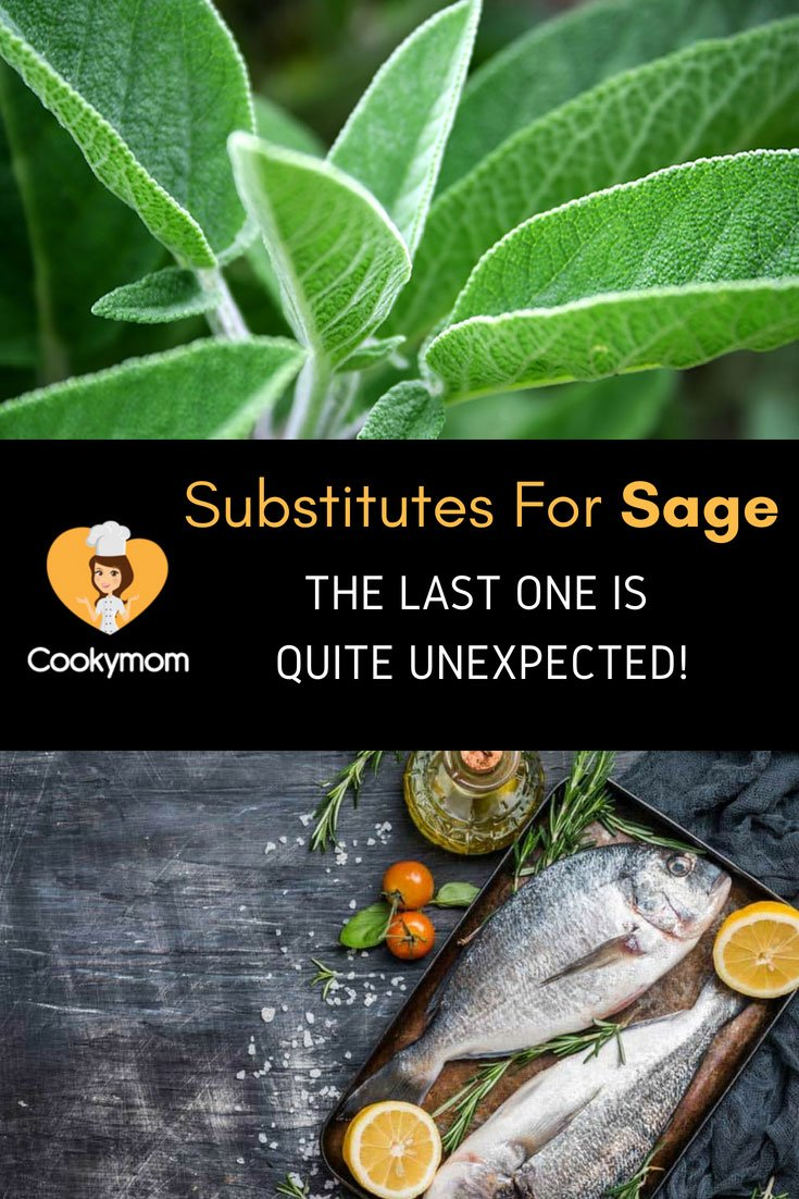 Out Of Sage Problem Solved With These 6 Wonderful Substitutes For